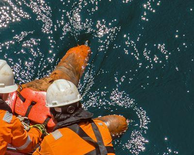 Maritime Man Overboard (OSHA)