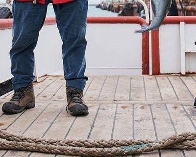 Maritime Walking & Working Surfaces Training (OSHA)