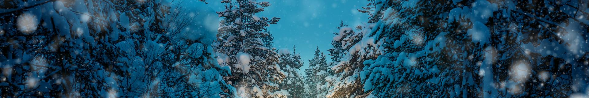 Winter Driving Fundamentals